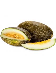 melón piel de sapo ecológico