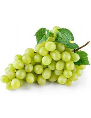 Uva blanca bio