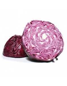Lombarda ecológica - Agrorigen bio. Pieza 1,5 kg. Aprox.