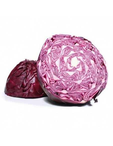 Col lombarda - Pieza 1,5 kg aprox - Agrorigen bio