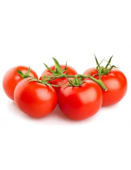 Tomate rama Bandeja 600 g - Agrorigen bio