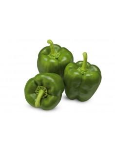 Pimiento california verde Bandeja 600 g - Agrorigen bio