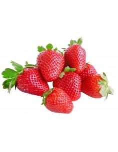 Fresas ecológicas  bandeja 250g - Agrorigen bio